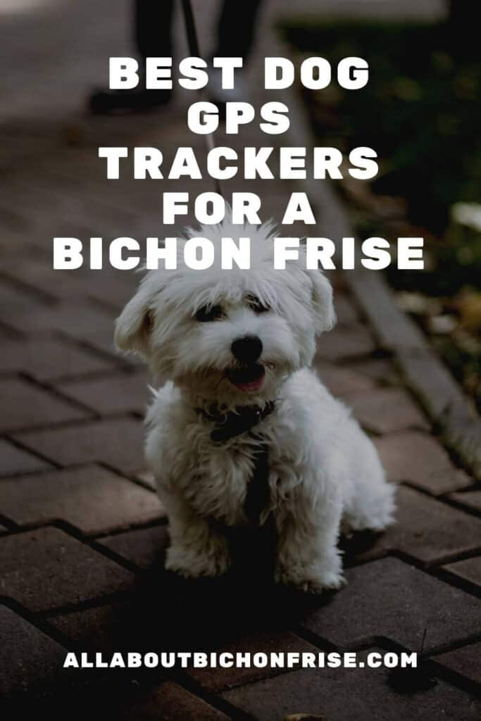Dog GPS Trackers For A Bichon Frise