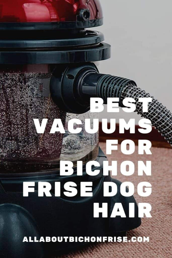 Best Vacuums For Bichon Frise Dog Hair - pin