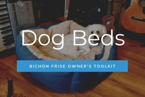 Dog Beds - Bichon Frise Owner's Toolkit