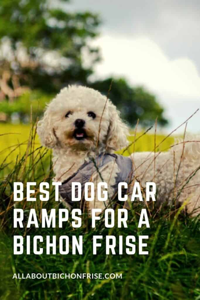Best Dog Car Ramps For A Bichon Frise - pin