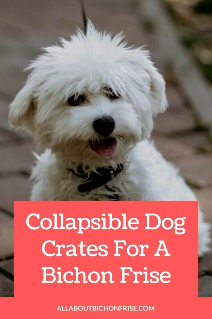 Collapsible Dog Crates For A Bichon Frise - Pin