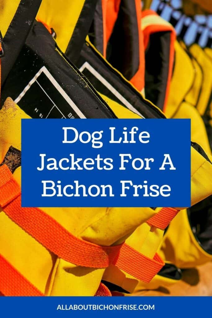 Dog Life Jackets For A Bichon Frise - Pin