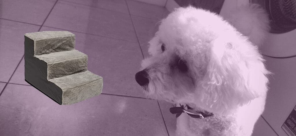 Dog Steps For A Bichon Frise - Cover-Image