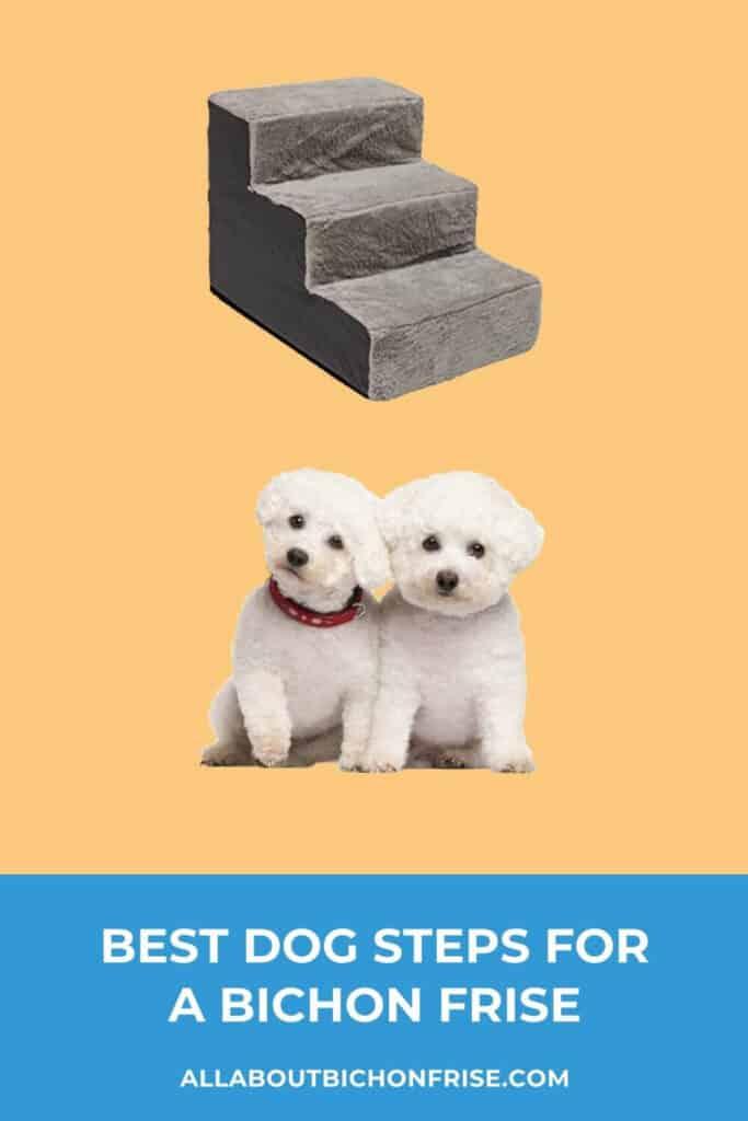 Dog Steps For A Bichon Frise - Pin